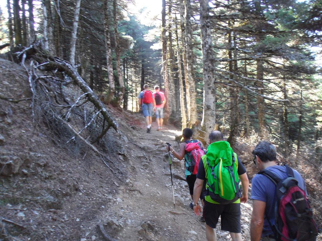 Trekking/8 Days/ Discover Central Evia