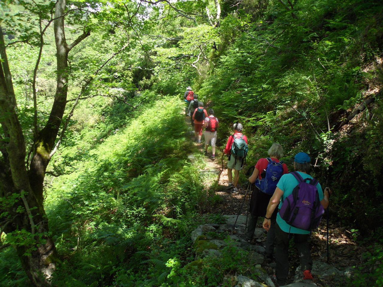Trekking / Dimosaris Gorge
