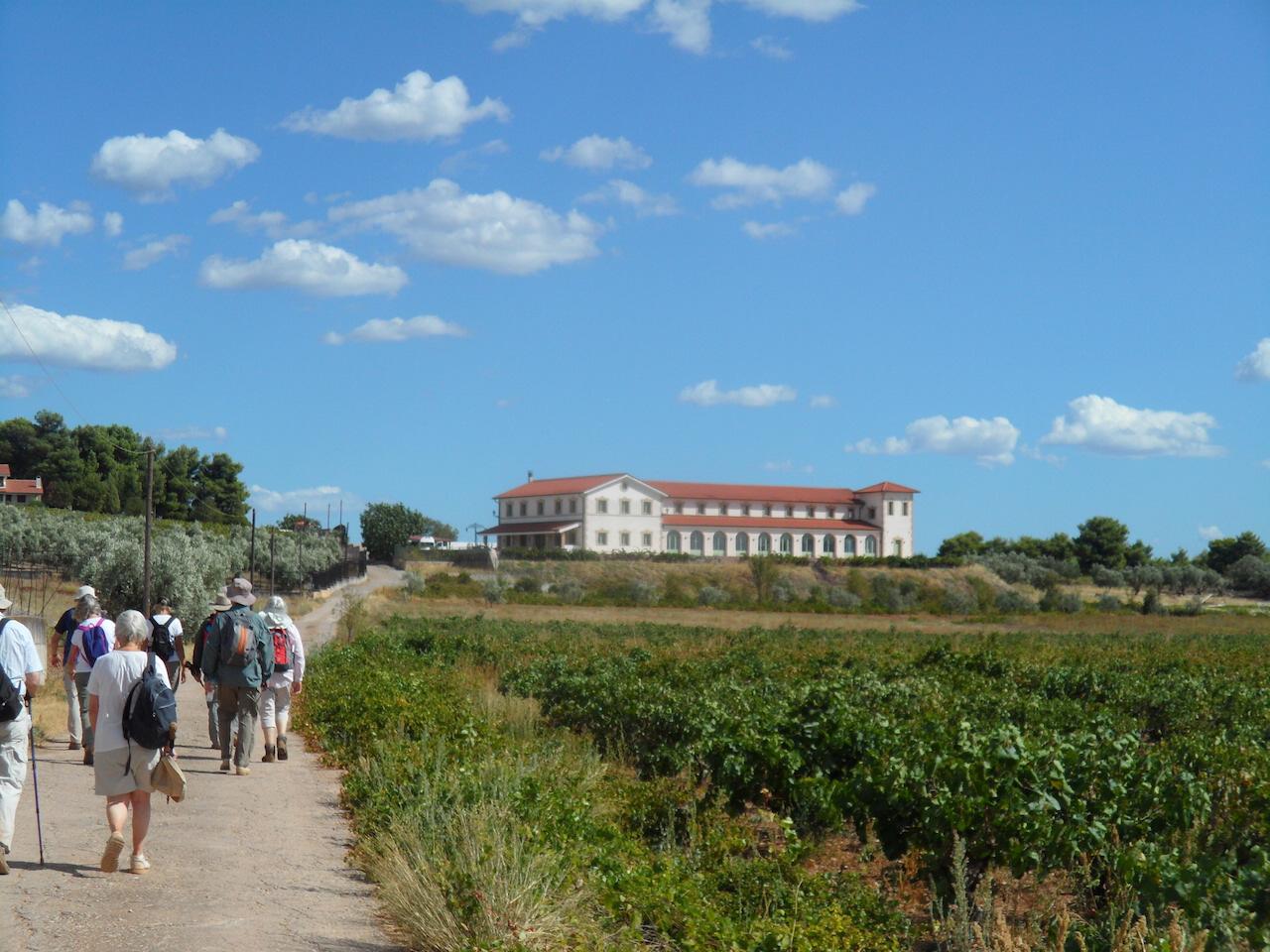 Hiking / Chalkis to Tzivani Winery